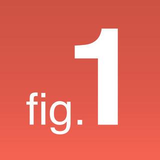 Figure 1 Icon
